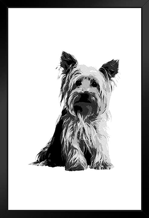 Dogs yorkshire terrier painting black white framed poster 12x18 by proframes