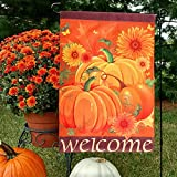 Aparty4u Welcome Fall Pumpkin Garden Flag 12″×18″, Double Sided Decorative Fall Autumn Sunflower Thanksgiving Harvest Garden Flag Review