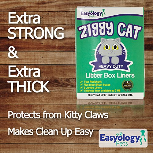 Buy what is the best cat litter box for odor control