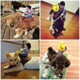 Cowboy Rider Horse,Homedeco Pet Christmas Halloween Costume Knight Harness Clothing with Hat For Small Puppy Cats