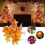 JIGUOOR Filo con lucine e foglie di acero, con alimentazione a batterie (non incluse), 1,65m, per giardini, case, matrimoni, Natale, San Valentino, decorazioni per feste Colorful