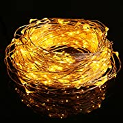 Amazon Lightning Deal 85% claimed: LED Copper String Lights, Fivanus 300 LEDs 98ft/30M Warm White Waterproof Christmas Party Wire Starry Light Fairy With 24keys Remote For Xmas Wedding Outdoor / Indoor Stars Decoration (UL Certified Adapter)(US Plug)
