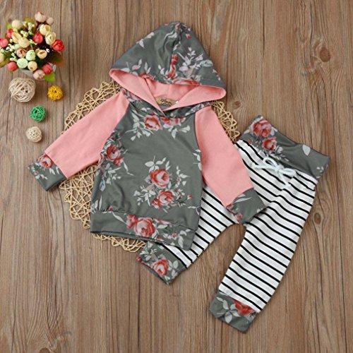 Omiky® Kleinkind Säugling Baby Mädchen Mädchen Blumen Streifen Hoodie Tops + Pants Outfit Kleider Set Grau