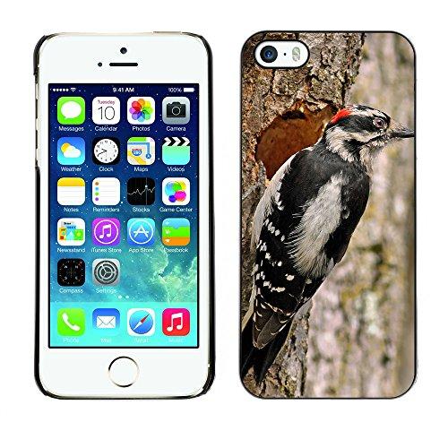 Premio Sottile Slim Cassa Custodia Case Cover Shell // F00032436 pivert hardworking // Apple iPhone 5 5S 5G