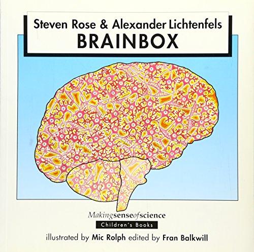 brainbox nature - 9