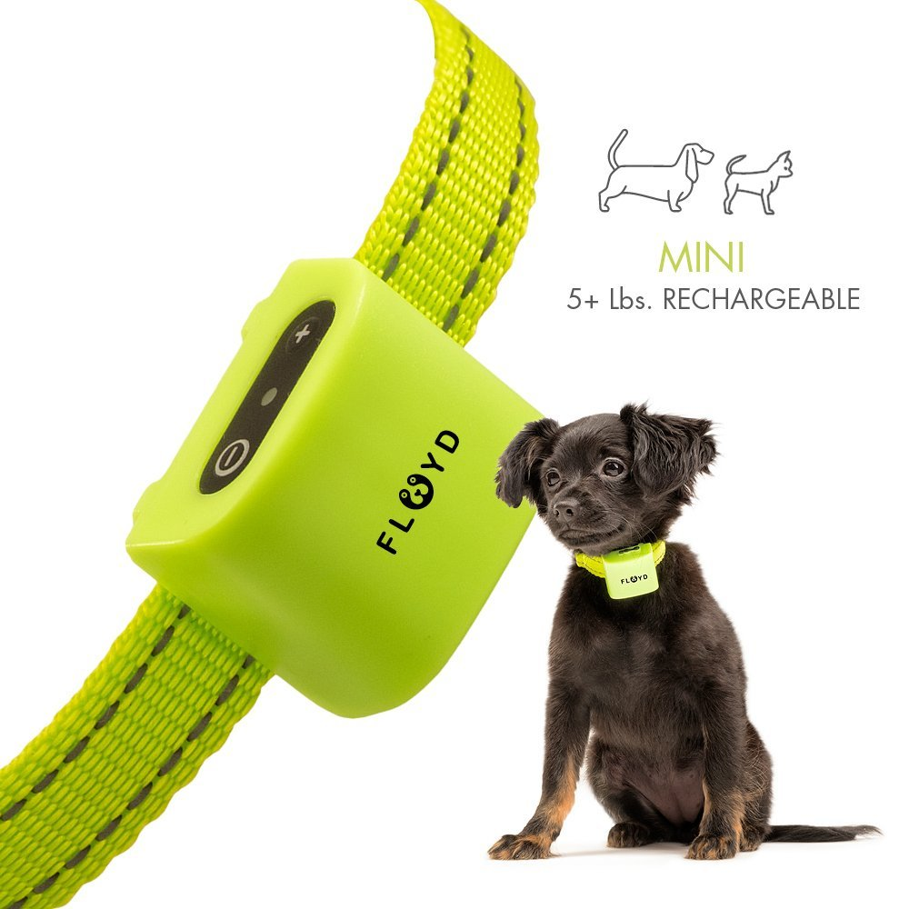 Floyd Small Dog Bark Collar for Tiny Puppies to Medium Dogs (5+lbs) – Rechargeable Vibrating Anti Barking Device – Smallest and Safest on Amazon - No Shock and No Spiky Prongs by Floyd (Image #1)