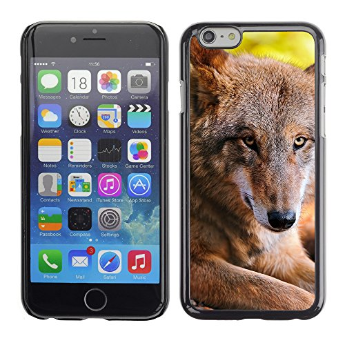 Premio Sottile Slim Cassa Custodia Case Cover Shell // V00004044 loup repos // Apple iPhone 6 6S 6G 4.7""
