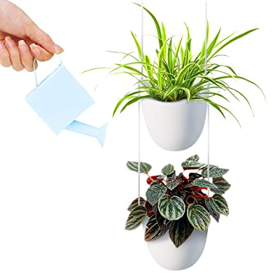 White Ceramic Hanging Planter with Four Pots, Modern Minimalist Design, Ideal for Succulents, Herbs, Ivy, and Air Plants, Add Elegance, Color and Life to Unused Spaces, Great for Offices and Homes: Garden & Outdoor