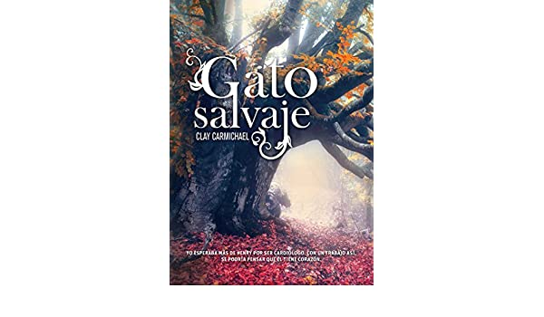 Amazon.com: Gato salvaje (Novela juvenil) (Spanish Edition) eBook: Clay Carmichael: Kindle Store