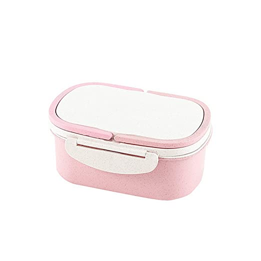 El almuerzo portátil material sano Caja de 2 capas de paja de ...