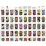 1992 Wildflowers Full Sheet of 50 29 Cent Stamps Scott 2647-96
