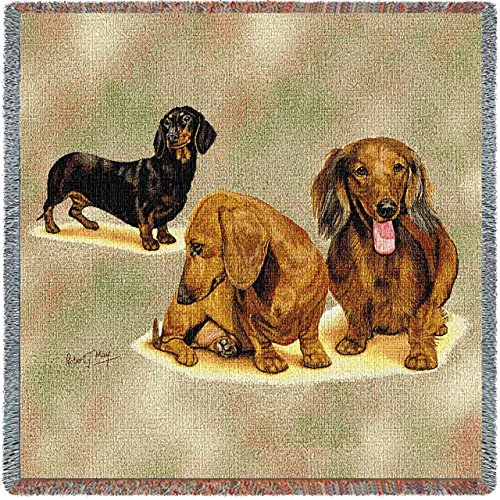 (Pure Country Weavers - Dachshund Puppies Woven Throw Blanket with Fringe Cotton. USA Size 54x54)