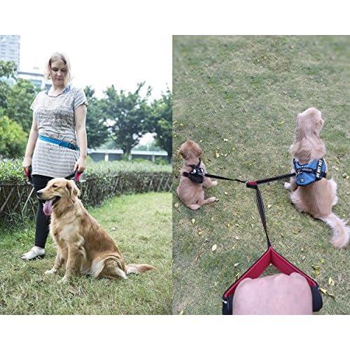 well-wreapped Taglory Multi-Functional Dog Leash / Basic 6 Ft Dog Training Walking Leash / Double Dog Leash for 2 Dogs