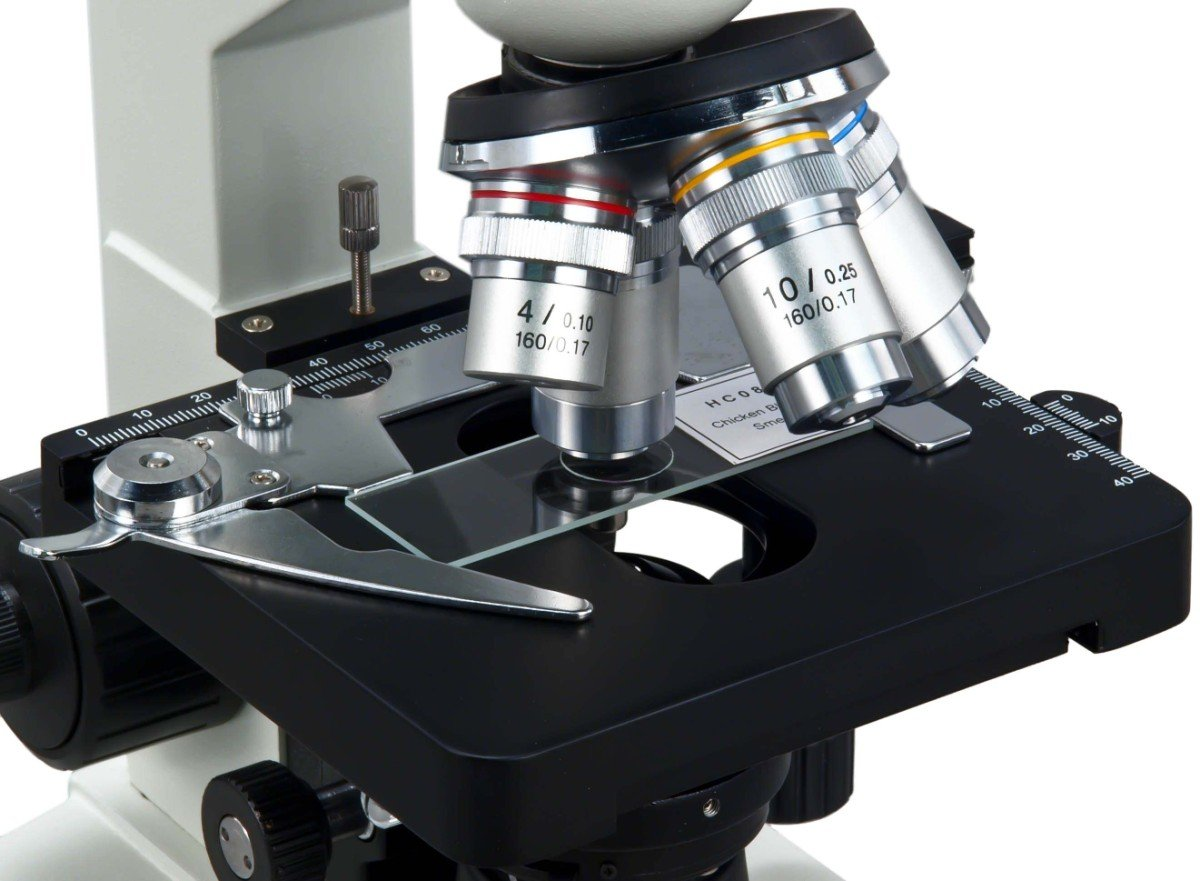 Amazon awarded best compound microscope 2016 omax 40x 2000x amazon awarded best compound microscope 2016 omax 40x 2000x lab led binocular microscope with double layer mechanical stage w blank slides covers and ccuart Gallery