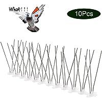 EXLECO Sistema Anti pájaros, Acero Inoxidable-3M