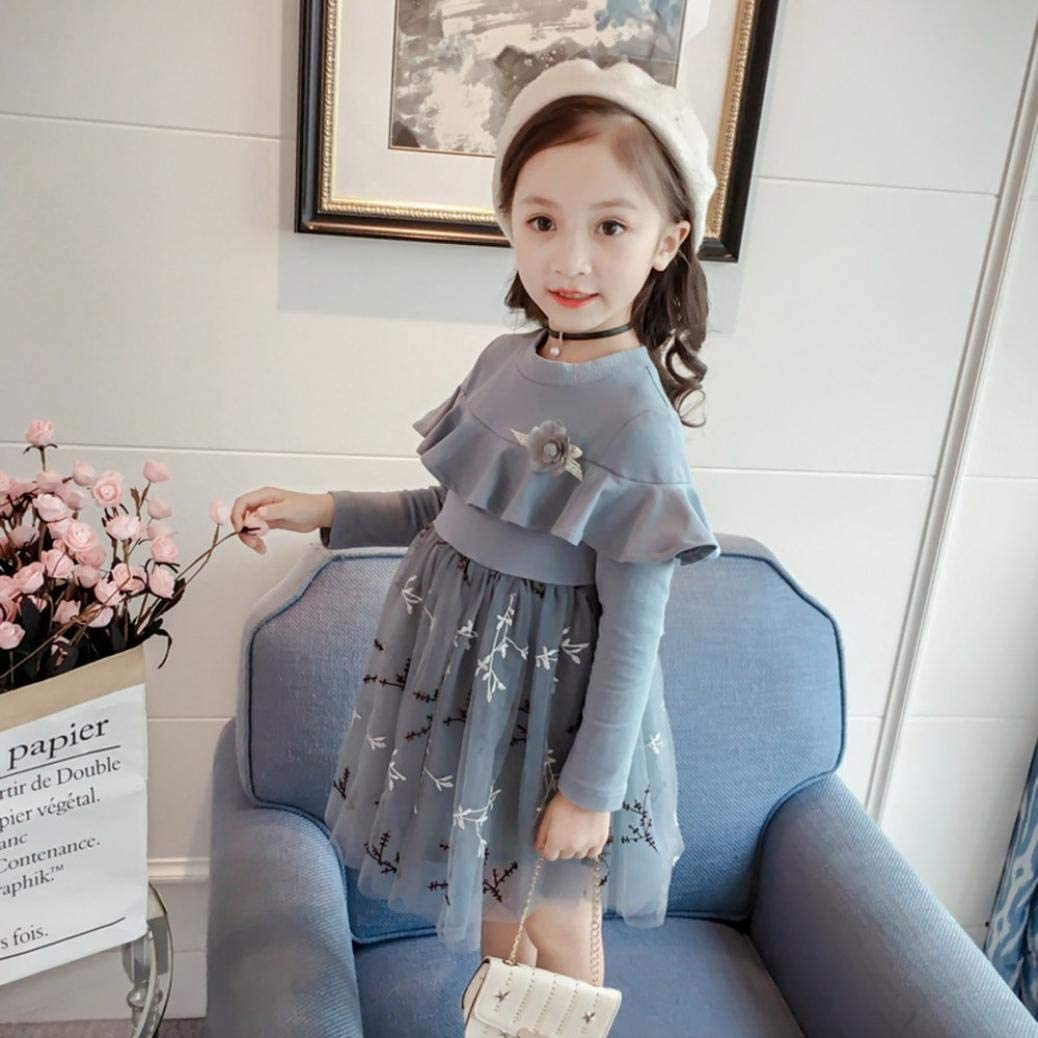 Baby Girl Dress Winter,Fineser Cute Infant Toddler Baby Girl Flower Ruffles Embroidery Dresses Clothes Outfits