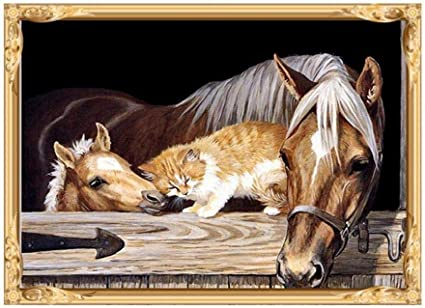 DIY 5D Diamond Painting Kit Horses and Cat Embroidery Cross Crafts Stitch