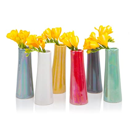 225 & Chive - Set of 6 Galaxy Small Cylinder Ceramic Bud Flower Vase Unique Single Flower Decorative Floral Vase for Home Decor Bulk (Mix)