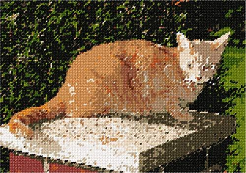 (pepita Cat in Garden Needlepoint Canvas)