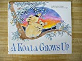 A Koala Grows Up, Rita Golden Gelman, 0590305638