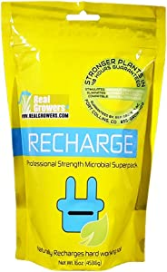Real Growers Recharge (16oz)