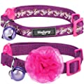 """Blueberry Pet 4 Designs Pack of 2 Easter Spring Cat Collars, The Power of All in One Adjustable Breakaway Cat Collar with Bell & Flower, Neck 9""""-13"""""""
