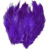 Prettyia 20本 染め 柔らかい 美しい 羽根 装飾用 衣装 帽子 インテリアなどに最適 紫