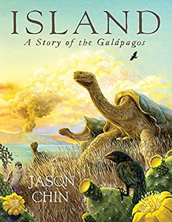 Island a story of the galpagos kindle edition by jason chin childrens ebooks fandeluxe Images