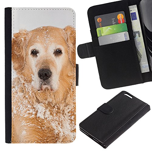 Billetera de Cuero Caso Titular de la tarjeta Carcasa Funda para Apple Iphone 6 PLUS 5.5 / Golden Retriever Winter Snow White / STRONG