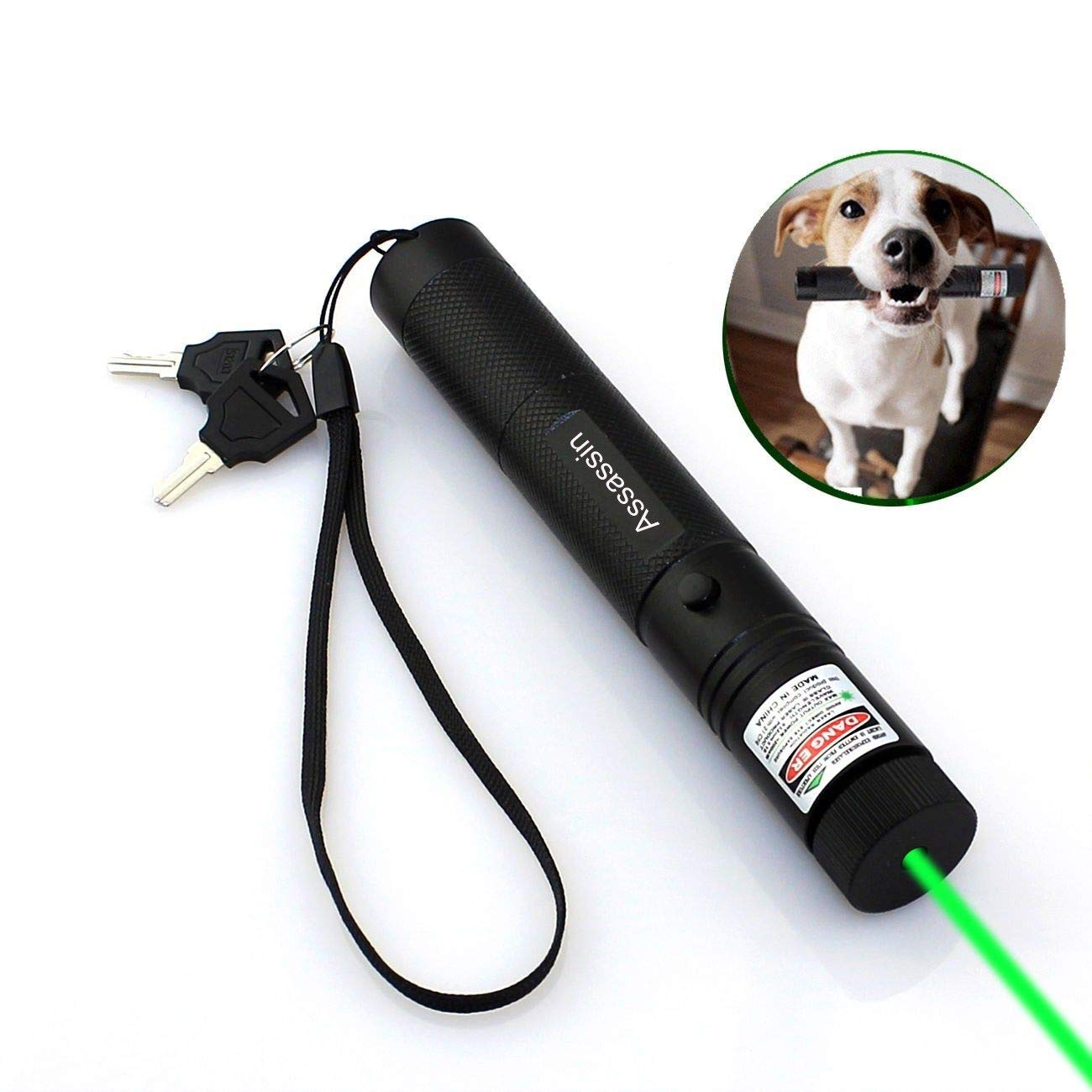 Assassin Tactical Green Hunting Rifle Scope Sight Laser Pen Remote Pen Pointer Projector Travel Outdoor Flashlight Interactive Baton Funny Laser Toy (Green)