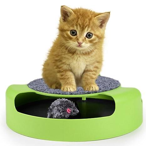 Juguete interactivo PanDaDa para gato o gatito para atrapar el ratón, tapete mullido para rascar