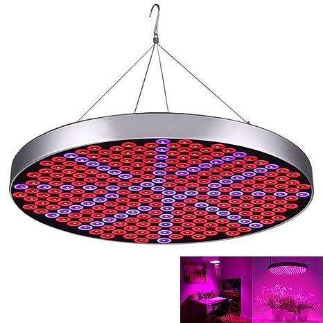 RANRANHOME Luces de Cultivo de Plantas LED, 50W 250 LED Plantas de Interior Bombillas de