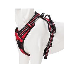 True Love  : un harnais durable et confortable pour votre chien