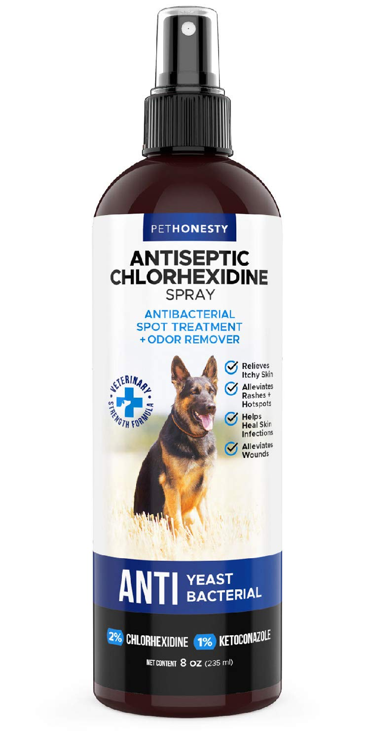 Hot Spot Spray for Dogs & Cats - Chlorhexidine Spray - Skin and Coat Treatment with Ketoconazole Aloe to Manage Ringworm, Itching Skin Relief, Yeast Infection, Allergies, Acne by PetHonesty