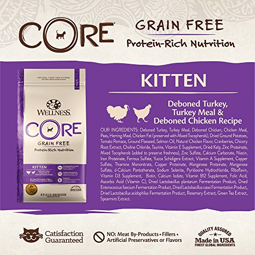 Wellness Core Dry Cat Food for Kittens