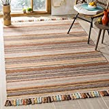 Safavieh Montauk Collection MTK901H Brown and Multi Area Rug (8′ x 10′) Review
