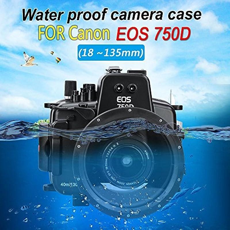 Sea Frogs Panasonic GH5 용수중 카메라 케이스 언더 워터 하우징 방수 성능40m 방수 프로텍터 방수 케이스 방수 하우징 보호 케이스 방수 프로텍터 수중 촬영용 국제 방수 등급IPX8
