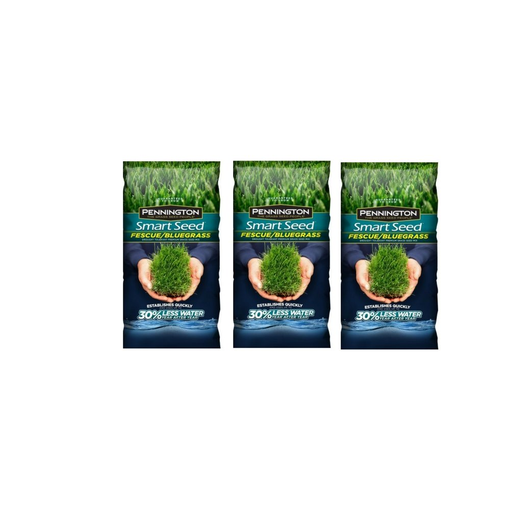Pennington Seed #118925 3LB Kentucky Blue Seed (3Pack)