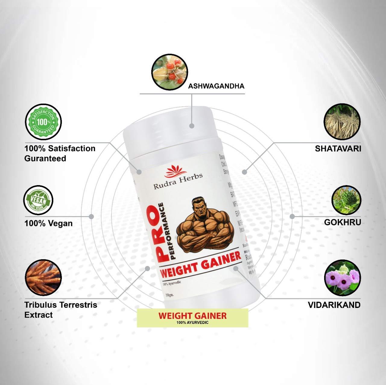 Rudra herbs ayurvedic weight gainer