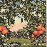 The Last Citrus Grove