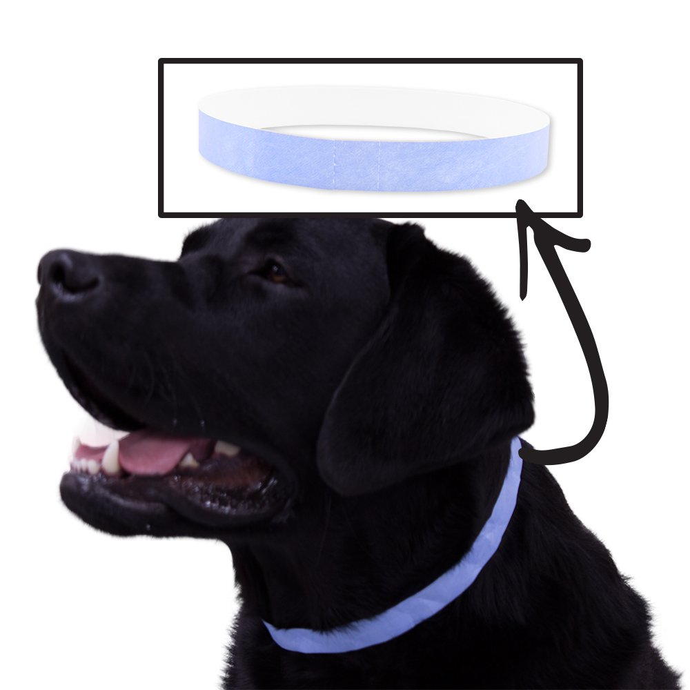 Wristco Safe-T Collar 500 Ct. ID Veterinary Bands for Animals - Light Blue