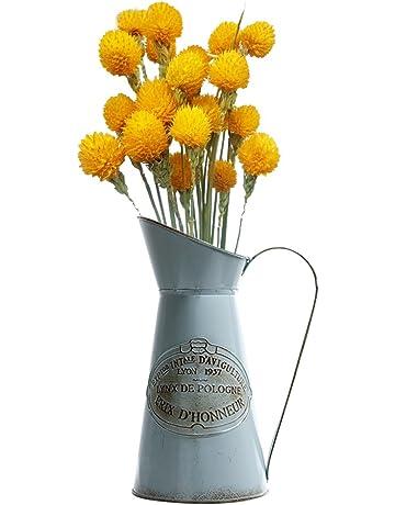 Bloomma Regaderas, Hierro Regadera Jardin maceta Jardinera Jardin Home Decor,jarra de hierro Jarrón