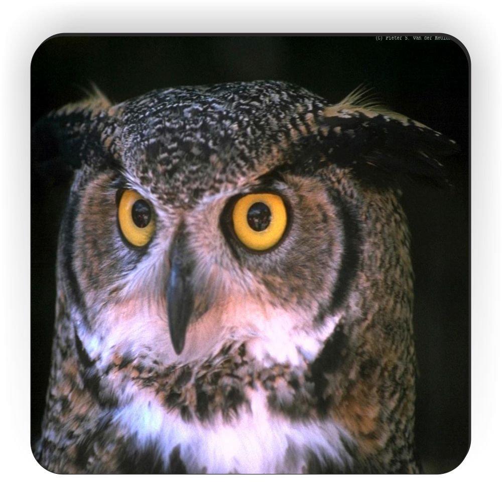 Rikki Knight Owl on Black Design Square Fridge Magnet