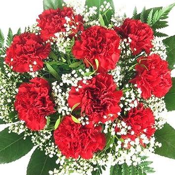 Prächtig Echte Rote Nelken - Blumen mit Schleierkraut und Schnittgrün als @RM_87