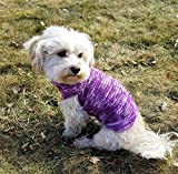 Dog turtleneck in purple tones, available in sizes XXS -L