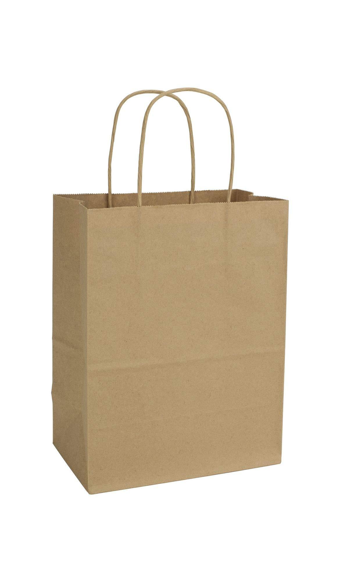 Kraft Paper Shoppers Cub, 8 1/4 x 4 1/4 x 10 3/4'' (250 Bags) - BOWS-15-8