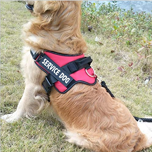 RED Large RED Large YYHSND Medium and Large Dogs, K-Chest Straps, 9 Traction Ropes, Pet Chest Back, Explosion-Proof, Dog Chain, Dog Rope, Black, Red, Yellow Pet Leash (color   RED, Size   L)