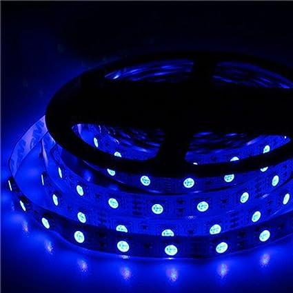 Amazon 12v flexible blue led strip lights 300 units 5050 leds 12v flexible blue led strip lights 300 units 5050 leds non waterproof led tape aloadofball Choice Image