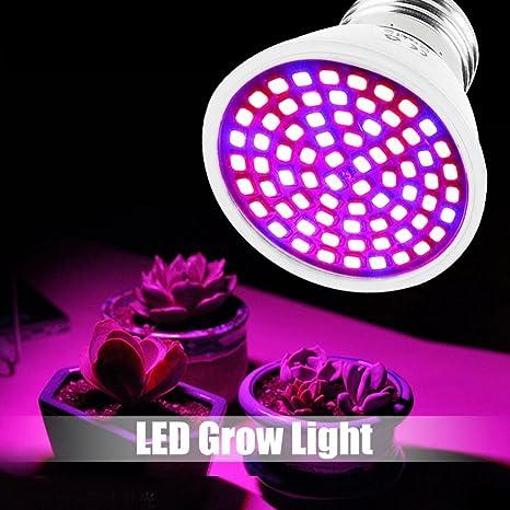 Bombilla de Cultivo LED, Lámpara de Cultivo de Plantas 220V E27 120 Ángulo de Haz