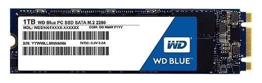 57 opinioni per WD Blue 1TB Solid State Drive interna M.2- SATA 6Gb/s- WDS100T1B0B